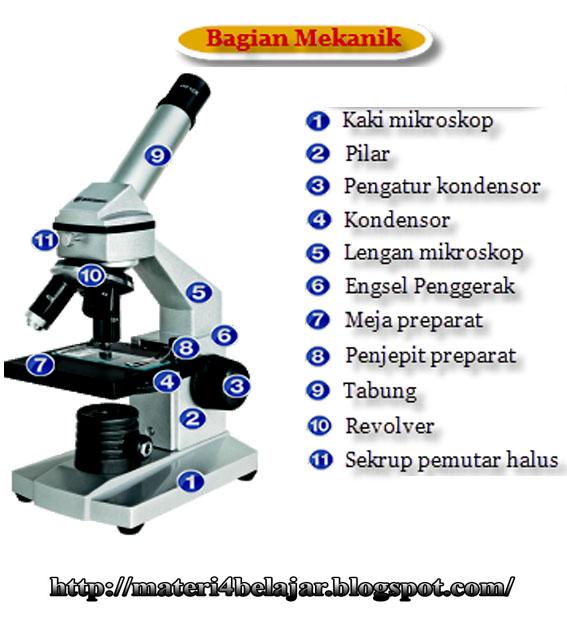 Bagian Bagian Mikroskop dan Fungsinya Beserta Gambar