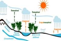 Siklus Hidrologi (Pengertian, Proses Terjadinya, dan Macam)