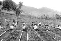 Pengertian Kondisi Sosial Ekonomi Beserta Ciri dan Strukturnya