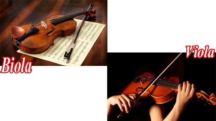 Contoh Alat Musik Gesek dari Berbagai Daerah Beserta Penjelasannya