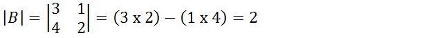Materi Determinan Matriks (Pengertian, Rumus, dan Contoh Soal)